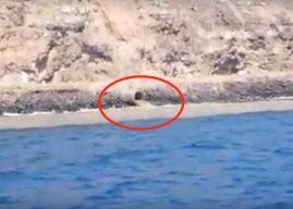 Empörung auf Teneriffa: Panne leitet Abwasser direkt ins Meer