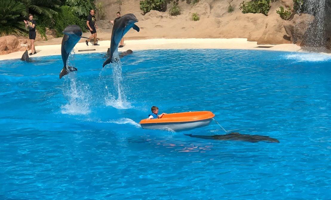 Delfine Loro Parque Kind Boot