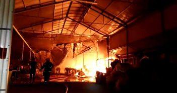 Feuer Tacoronte Teneriffa Feuerwehr 11-2017