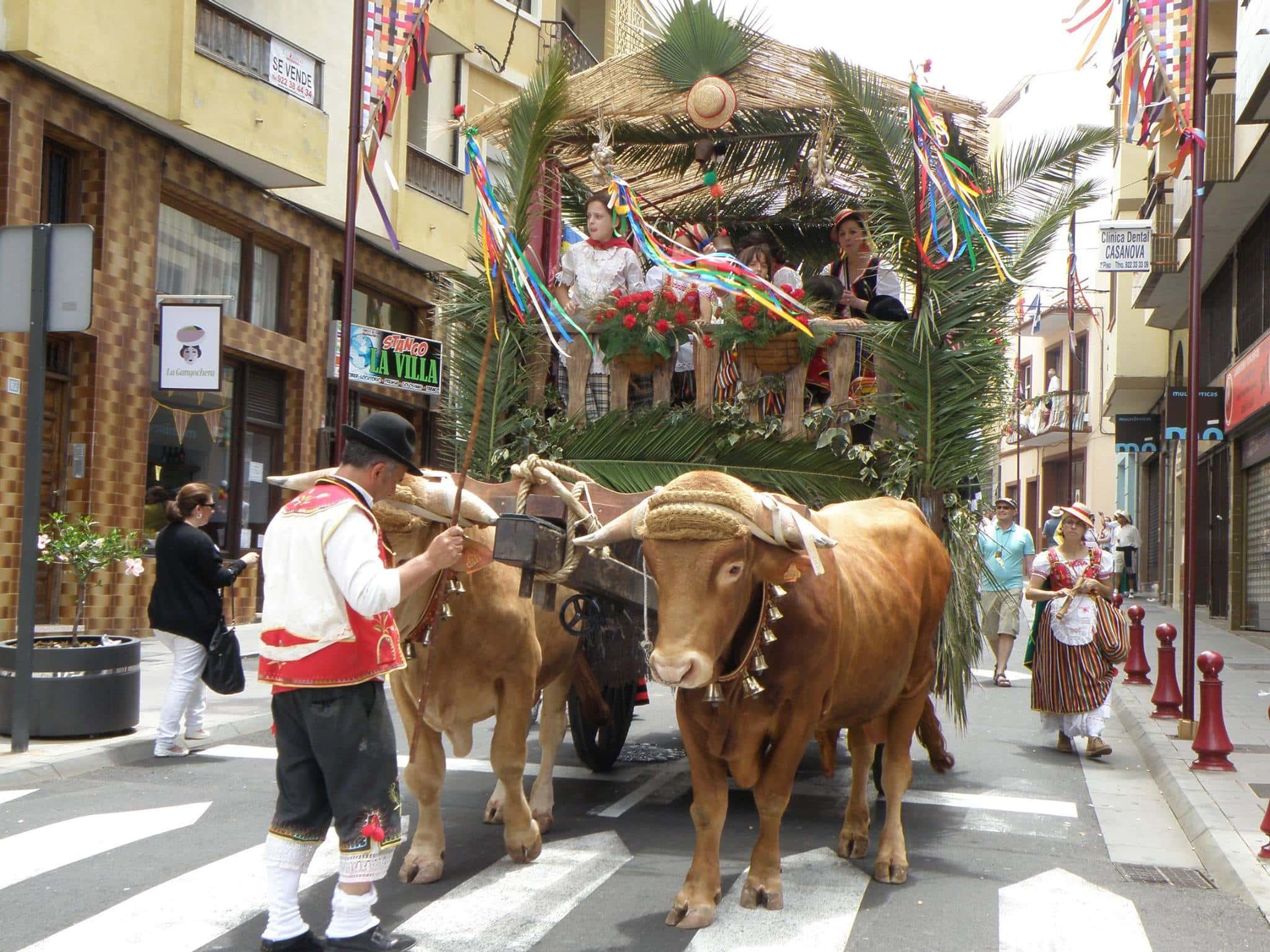 Fronleichnam Prozession La Orotava Viehwagen