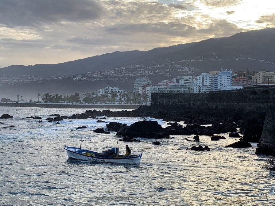 Puerto de la Cruz Teneriffa Hafen Fischer