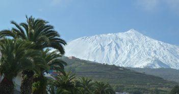 Teneriffa Teide Schnee Palme