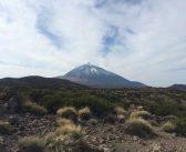 Erdbeben auf Teneriffa: Der Teide rumort wieder