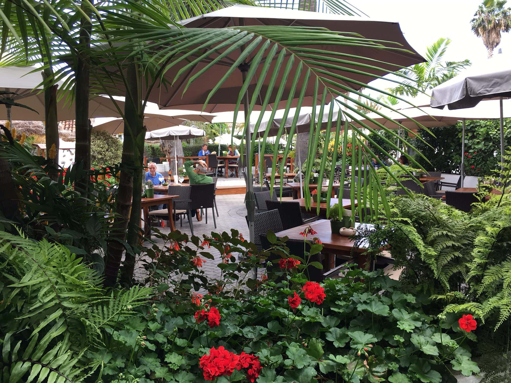 Tito 39 s bodeguita restaurant oase ber puerto de la cruz - Puerta de la cruz ...