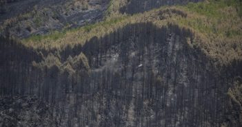 Walbrand La Palma Auswirkungen 2016