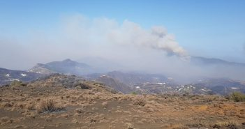 Waldbrand Feuer Gran Canaria Cabildo 08-2019