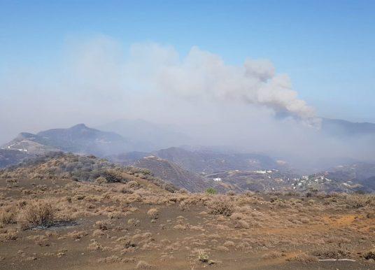 Schon 10.000 Evakuierte: Dritter Waldbrand hält Gran Canaria in Atem