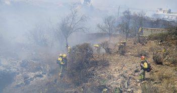 Waldbrand Flächenbrand La Palma Kanaren