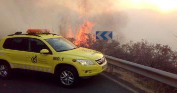 Waldbrand Gran Canaria 2017 Feuerwehr