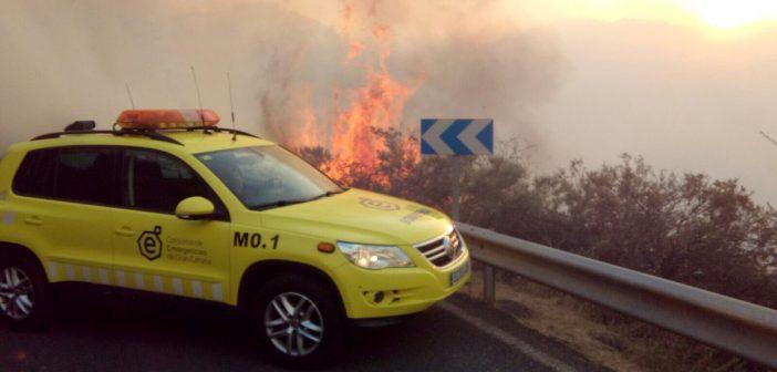 Verheerender Waldbrand wütet auf Gran Canaria