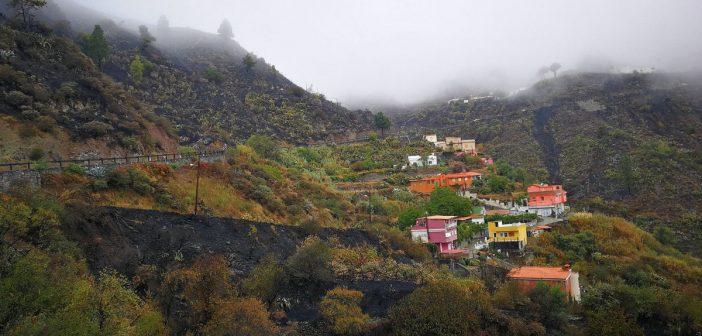 Waldbrand Gran Canaria 2017 Inselverwaltung