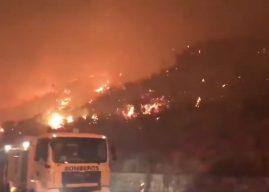 """Waldbrände auf Gran Canaria dauern an: """"Wir kämpfen um unsere Insel"""""""