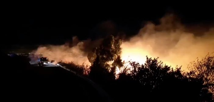 Waldbrand Gran Canaria Telde 08-2019