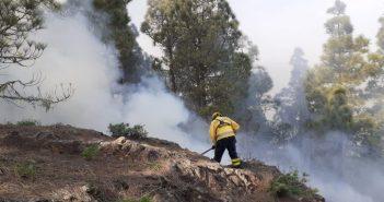 Waldbrand Gran Canaria Weihnachten 2020 Cabildo