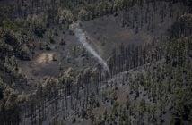 Waldbrand La Palma Bilanz 2016