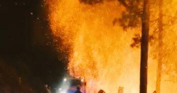 Waldbrand La Palma 08-2020