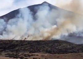 Feuer im Teide Nationalpark – Mehrere Hektar verbrannt