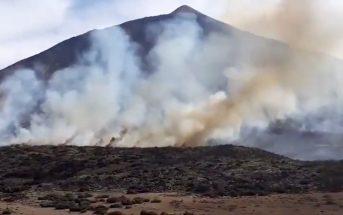 Feuer im Teide Nationalpark auf Teneriffa 2019