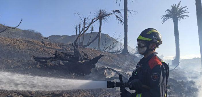 Waldbrand Teneriffa Feuerwehr Löscharbeiten La Laguna