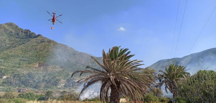 Fotos und Videos vom Flächenbrand bei La Laguna
