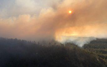 Waldbrand Teneriffa Rauch Luftbild