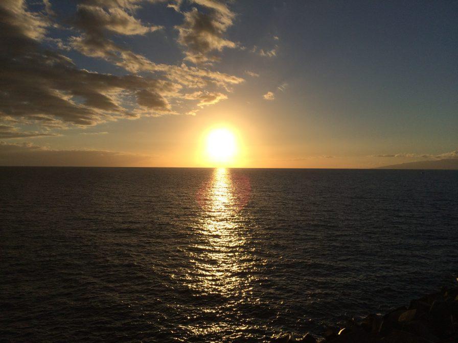 Whale Watching Teneriffa Sonnenuntergang